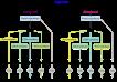 librede-biosynthesis-768x536